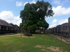 Ancien centre pénitentiaire dit Camp de la Transportation -  Camp de la Transportation