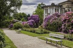 Maison romaine -  Epinal - Maison Romaine -Détail jardin