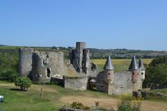 Château de la Haute-Guerche - English:  Saint-Aubin-de-Luigné