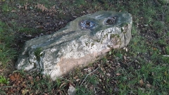 Polissoir dit La Pierre Saint-Guillaume - Français:   Polissoir fixe pour la fabrication et l\'entretien des haches néolithiques