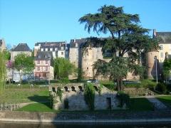 Enceinte gallo-romaine (restes) -  muraille Gallo-romaine de la Cité Plantagenêt et muraille médiévale au premier-plan