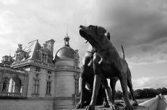 Domaine de Chantilly (parc également sur communes d'Avrilly-Saint-Léonard et Vineuil-Saint-Firmin) - Français:   Château de Chantilly et son parc