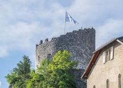 Château - English:  Castle of La Roche-sur-Foron, Haute-Savoie, France