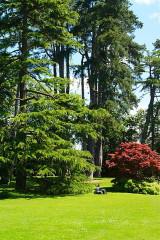 Jardin public - Français:   Jardin Botanique