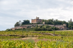 Château de Montmelas (également sur commune de Saint-Julien) - Français:   Château de Montmélas vue avec vignes