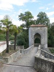 Vestiges d'un ancien pont - English:  Pont de la Légende (=Bridge of the Legend) in Sauveterre-de-Béarn (Pyrénées-Atlantiques, France).