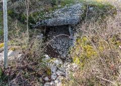 Dolmen et tumulus du Genevrier - English:   Dolmen du Genévrier in commune Salles-la-Source, Aveyron, France
