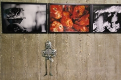 Immeuble abritant le siège du Parti Communiste Français -   Quartier du Combat | Place du Colonel Fabien French Communist Party headquarters (PCF). Arch. Oscar Niemeyer and Jean Prouvé 1965-71 and 1979-80. Horsesvisions exhibition-tribute to Patti Smith's Horses album  Oct.17 - Dec.6, 2015