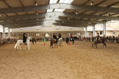 Ecole nationale vétérinaire -  Spectacle équestre lors des journées portes ouverte 2010 de l'ENVA.