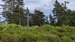 Champ de bataille du Linge - Deutsch:   Das Memorial du Linge auf dem Lingekopf im Elsass, Frankreich. Vom 20. Juli 1915 bis zum 16. Oktober 1915 tobten hier während des ersten Weltkrieges heftige Kämpfe, welche 17000 Todesopfer forderten. Die Schützengräben sind mittlerweile als Gedenkstätte zu besichtigen.