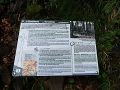 Champ de bataille de l'Hartmannswillerkopf dans la forêt communale (également sur communes de Hartmannswiller, Soultz-Haut-Rhin, Wattwiller et Wuenheim) - Deutsch:   Hartmannswillerkopf; Gefechtsfeld