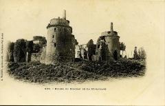 Château de la Hunaudaye -