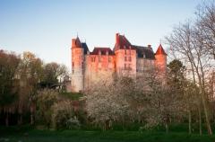 Domaine de Saint-Brisson - Français:   Un matin d'avril depuis le marronnier dans le parc du château de Saint Brisson.