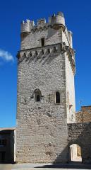 Remparts - Français:   France - Gard - Saint-Laurent-des-Arbres - Donjon