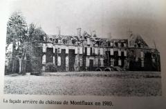 Château de Montfléaux - Français:   Vue arrière du château