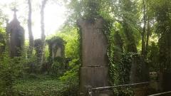 Cimetière de la Madeleine - Français:   Tombes disparaissant sous la verdure.