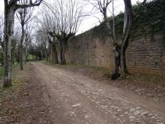 Château - Français:   Allée du château, en allant vers la rue du Château.