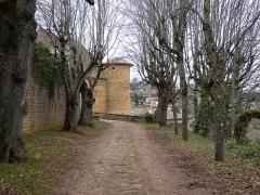 Château - Français:   Allée menant au château, depuis la rue du Château.