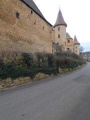Château - Français:   Vue sur des tours du château.