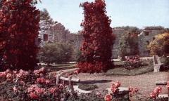 Villa dite Villa Lafont - Français:   Villeurbanne - Jardin de la villa Lafont - 1947