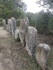 Alignement de menhirs de Pagliajo - Français:   Alignements mégalithiques de Paddaghju