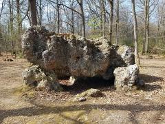 Dolmen dit La Pierre Courcoulée - Français:   Balade en forêt d\'Évreux, dolmen de la Pierre Courcoulée
