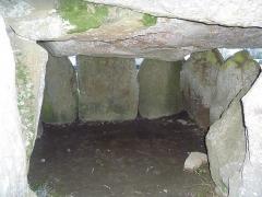 Dolmen de Crucuno - Français:   Plouharnel: le dolmen de Crucuno, vue intérieure.