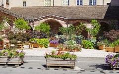 Ancienne abbaye Saint-Colomban - Français:   L\'ancien monastère de Luxeuil-les-Bains.