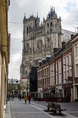 Cathédrale Notre-Dame - Polski:   Cathédrale Notre-Dame Amiens.