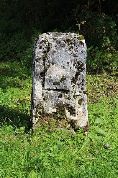 Photo du Monument Historique Borne frontière, appelée Borne au Lion situé à Champfromier