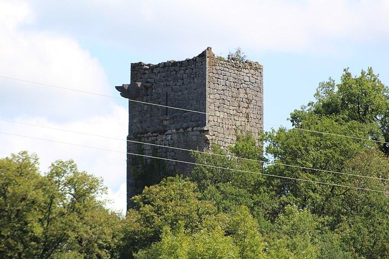 Photo du Monument Historique Château de la Dorches (restes) situé à Chanay