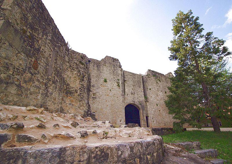 Photo du Monument Historique Château situé à Groslée