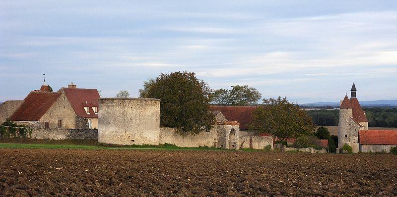 Photo du Monument Historique Restes du château d'Artangues situé à Chareil-Cintrat