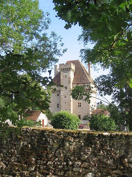 Photo du Monument Historique Château de la Souche situé à Doyet