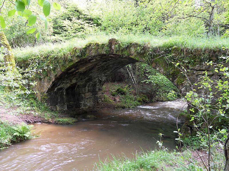 Photo du Monument Historique Pont dit Pont Romain situé à Droiturier