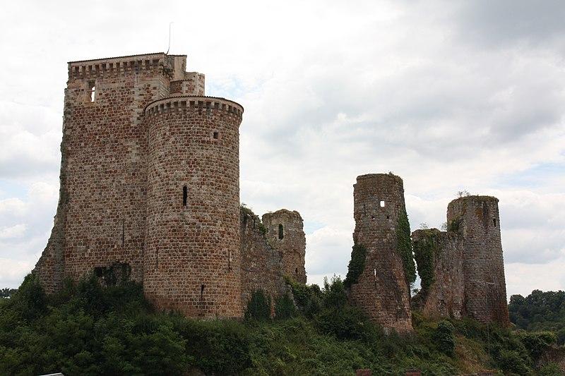 Photo du Monument Historique Ruines du château situé à Hérisson