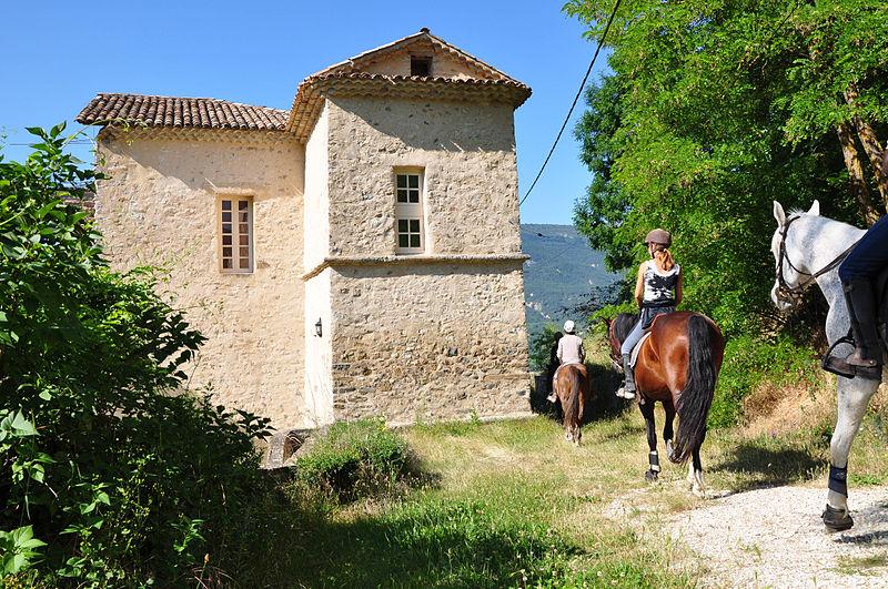 Photo du Monument Historique Château (ruines) situé à Clumanc