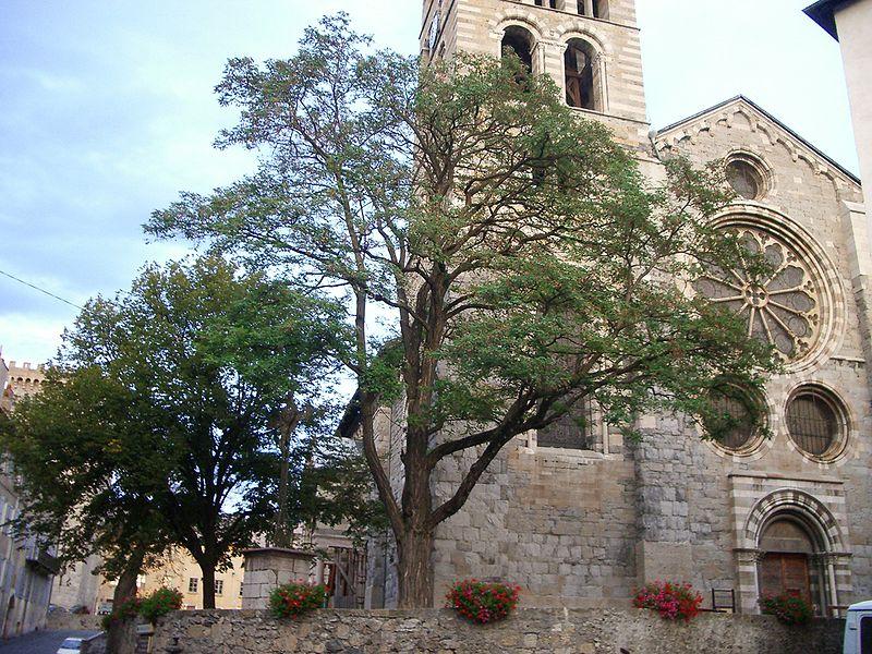 Photo du Monument Historique Eglise Notre-Dame (ancienne cathédrale) situé à Embrun