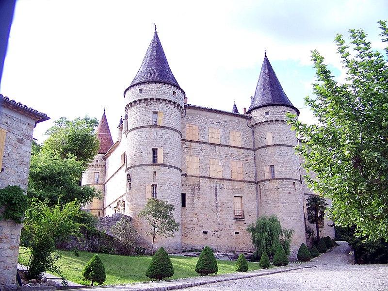 Photo du Monument Historique Château situé à Chambonas