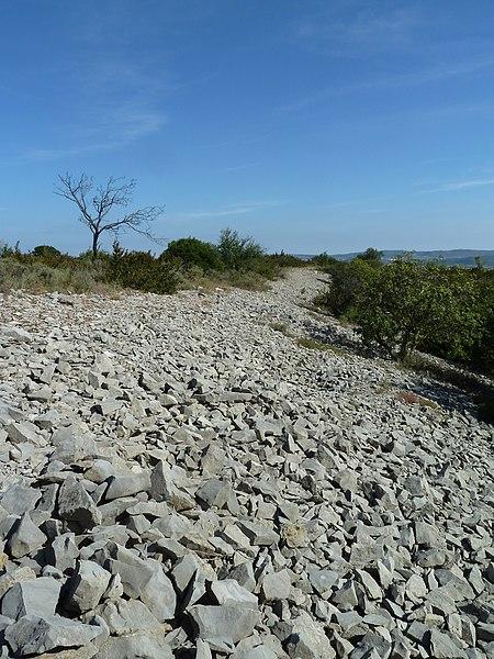 Photo du Monument Historique Oppidum de Jastres-Sud situé à Lavilledieu