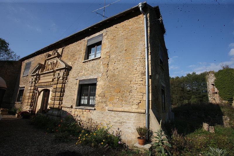 Photo du Monument Historique Château d'Auflance situé à Auflance