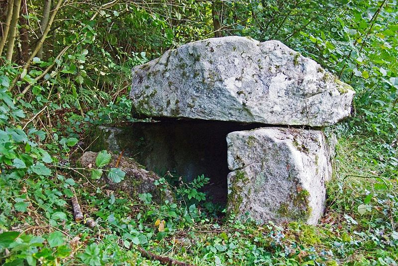 Photo du Monument Historique Dolmen d'Ayer situé à Bordes-sur-Lez (Les)