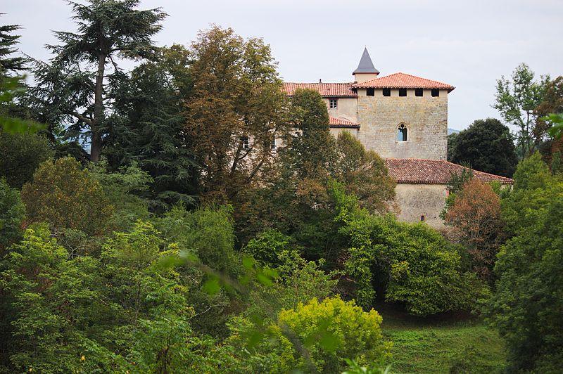 Photo du Monument Historique Château situé à Crampagna