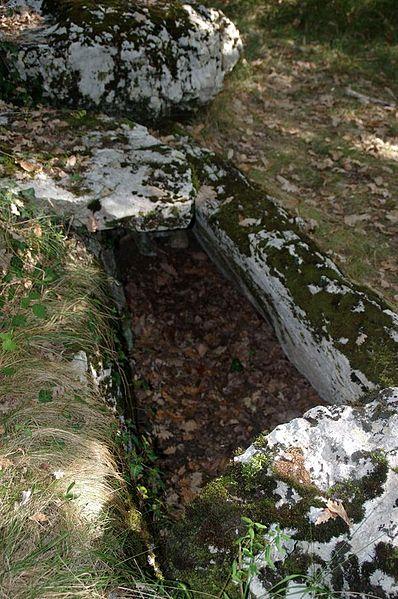Photo du Monument Historique Dolmen de Goudère situé à Gabre