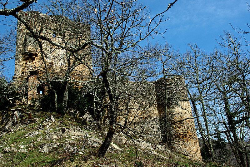 Photo du Monument Historique Château de la Garde (également sur commune de Ustou) situé à Seix