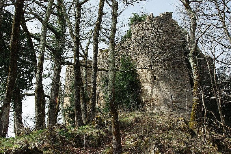 Photo du Monument Historique Château de la Garde situé à Ustou