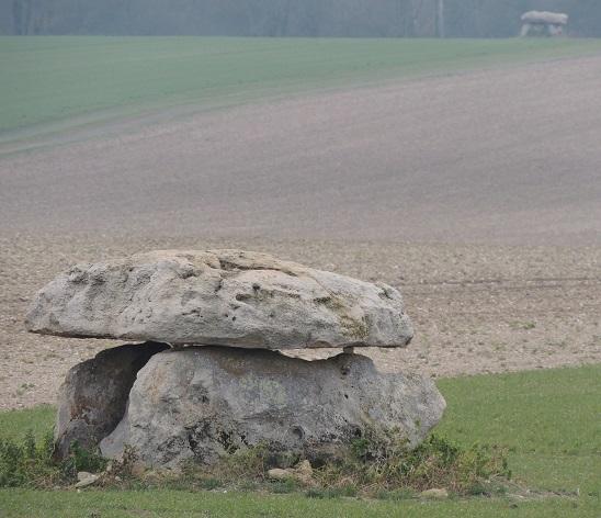 Photo du Monument Historique Dolmen situé à Marcilly-le-Hayer