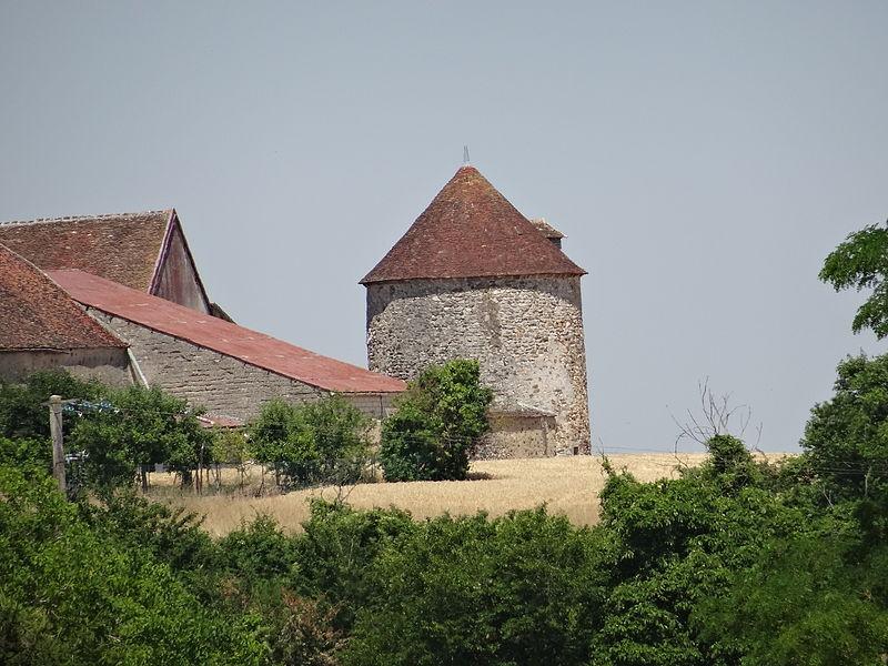 Photo du Monument Historique Pigeonnier de Courtioux situé à La Saulsotte