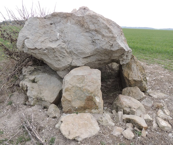 Photo du Monument Historique Dolmen dit du Pavois situé à Saint-Nicolas-la-Chapelle