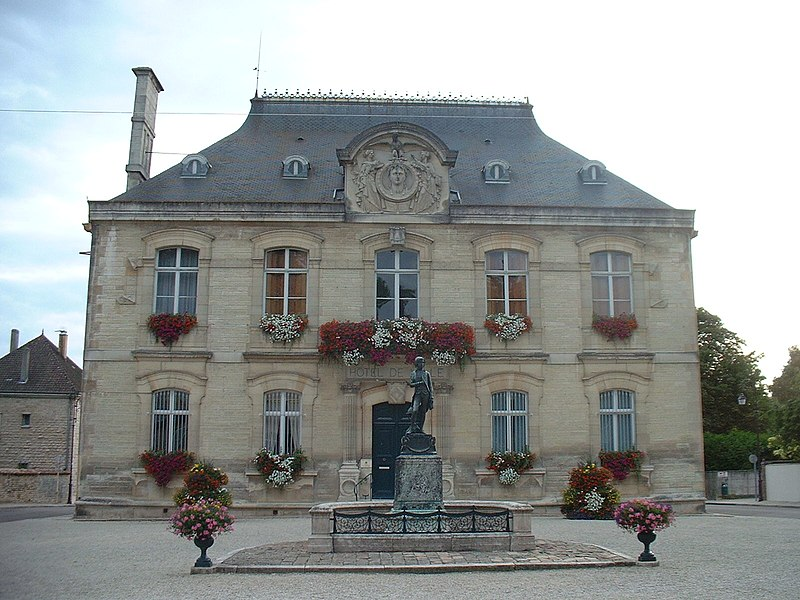 Photo du Monument Historique Statue de Napoléon et Hôtel de ville situé à Brienne-le-Château